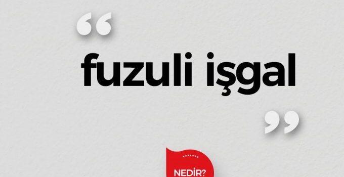 Fuzuli ( Haksız ) İşgal Tahliye  Davası Dilekçesi