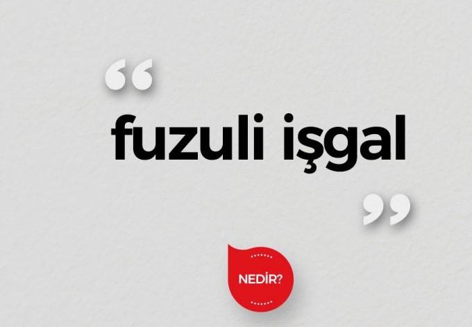 fuzuli ( haksız ) işgal dava